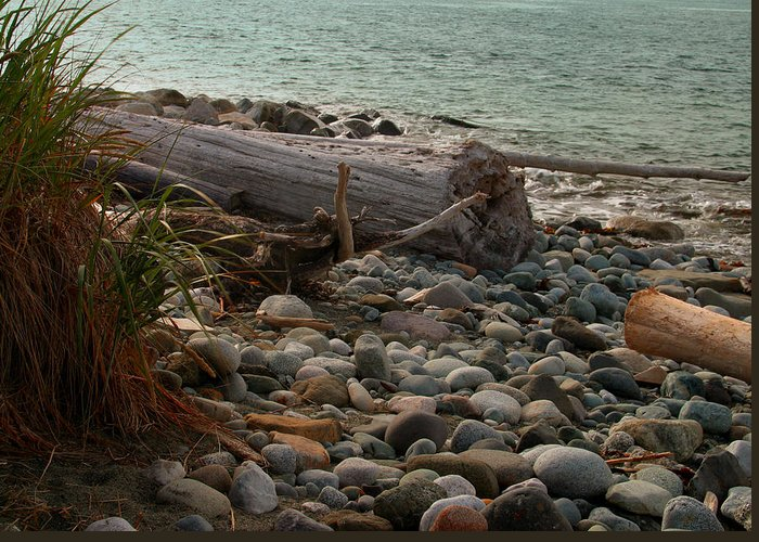 Shoreline Greeting Card featuring the photograph Shore by Joseph G Holland