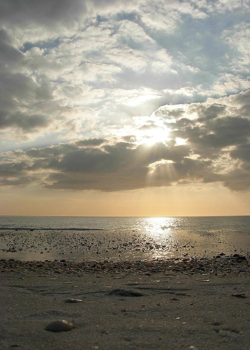Sunsets Greeting Card featuring the photograph Shore Rays by Amanda Vouglas
