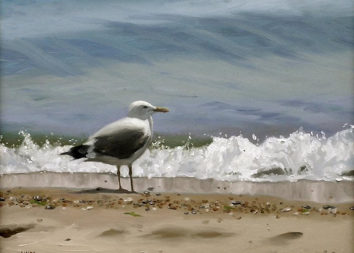 Seagull Greeting Card featuring the painting Shoreline Breeze by Linda Tenukas