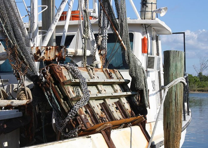 Boat Greeting Card featuring the photograph Shrimp Boat Is In by Tara Moorman Photography