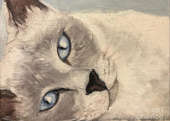 Cat Greeting Card featuring the painting Siamese Cat by Boni Arendt