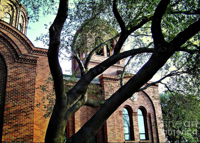 Church Greeting Card featuring the photograph Side Entrance Serbian Orthodox Church by Amy Delaine