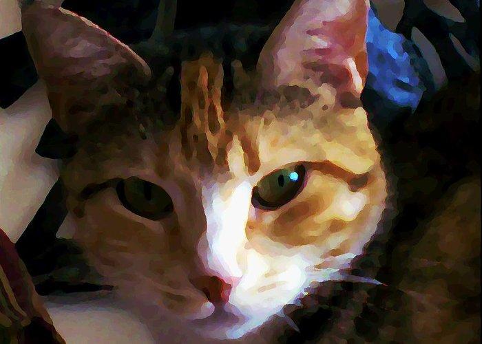 Cat Greeting Card featuring the photograph Sidnie by Joseph Ferguson