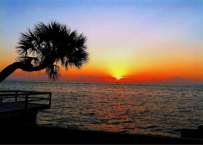 Siesta Key Greeting Card featuring the photograph Siesta Key Sunset 2 by Dyana Jean