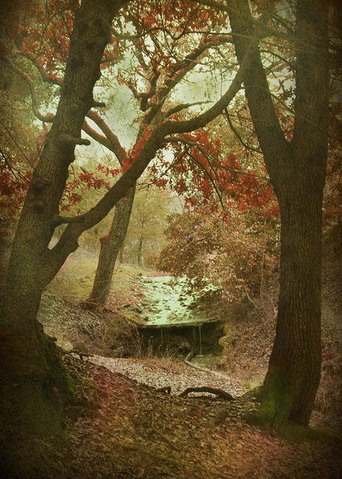 Stream Greeting Card featuring the photograph Sighs Of Love by Laurie Search