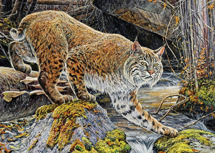 Bobcat Greeting Card featuring the painting Silent Caution by Steve Spencer
