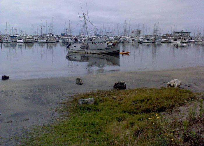 Bay Greeting Card featuring the photograph Silent Waters by Joan Panetta