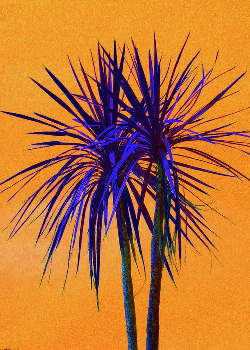 Australian Cordylines Greeting Cards