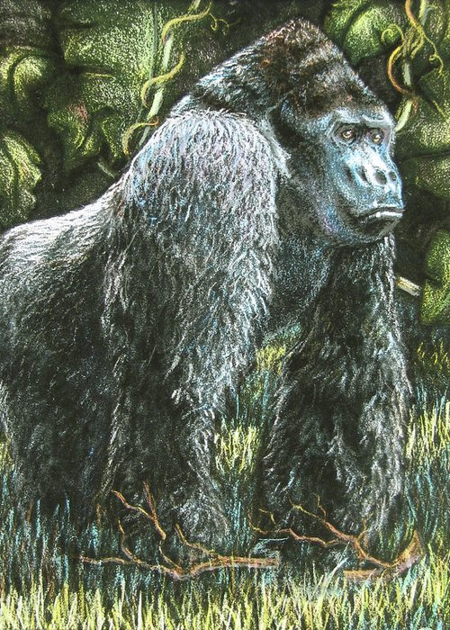 Fuqua - Artwork Greeting Card featuring the drawing Silverback-king Of The Mountain Mist by Beverly Fuqua