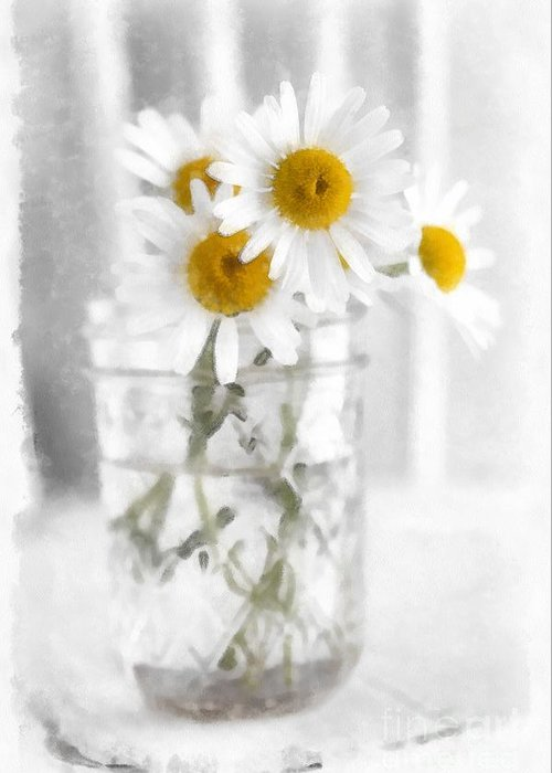 Daisy Greeting Card featuring the photograph Simple Flowers by Edward Fielding