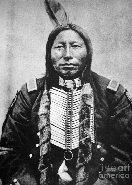 19th Century Greeting Card featuring the photograph Sioux: Crow King by Granger