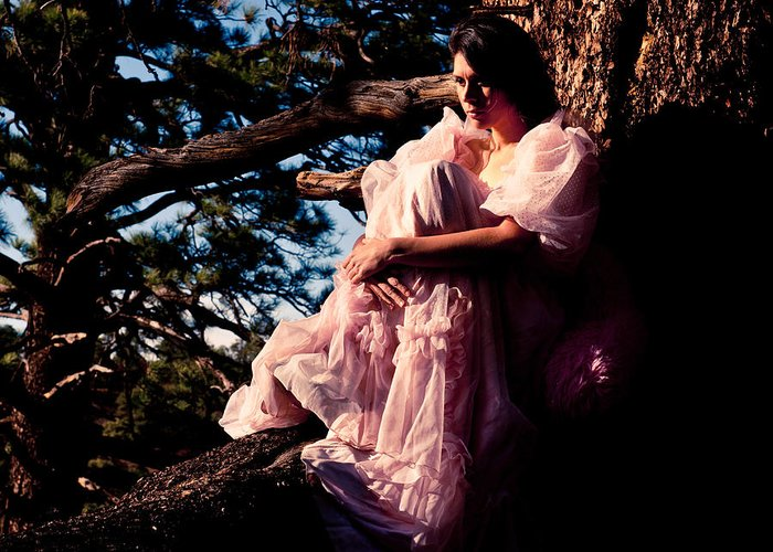 Pink Dress Greeting Card featuring the photograph Sitting In A Tree by Scott Sawyer