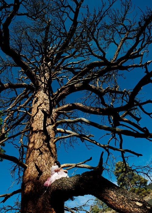 Woman In Pink Greeting Card featuring the photograph Sitting In Tree 2 by Scott Sawyer
