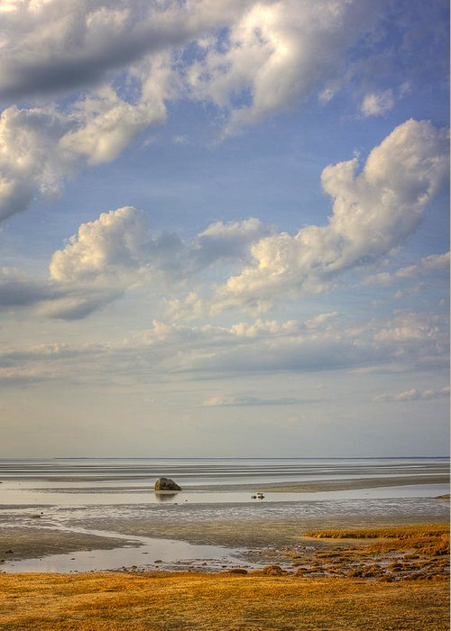 Landscape Greeting Card featuring the photograph Skaket Beach Cape Cod by Mikael Carstanjen