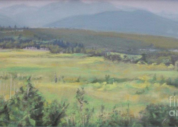 Skokomish Valley Greeting Card featuring the painting Skokomish Valley by Terri Thompson