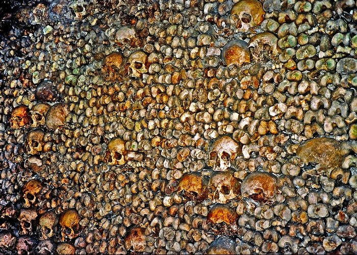 Skulls Greeting Card featuring the photograph Skulls and Bones under Paris by Juergen Weiss