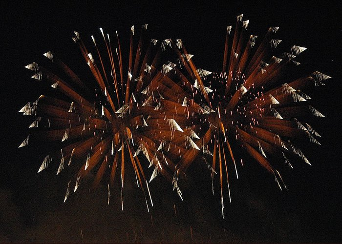 Fireworks Greeting Card featuring the photograph Sky Flowers Lll by Dan Fulk