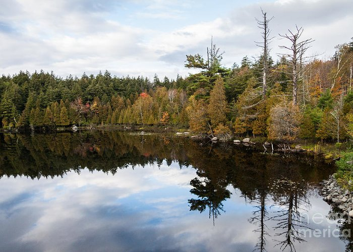 Lake Placid Greeting Card featuring the photograph Sky Reflections by Terri Morris