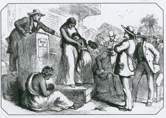 History Greeting Card featuring the photograph Slave Auction by Photo Researchers