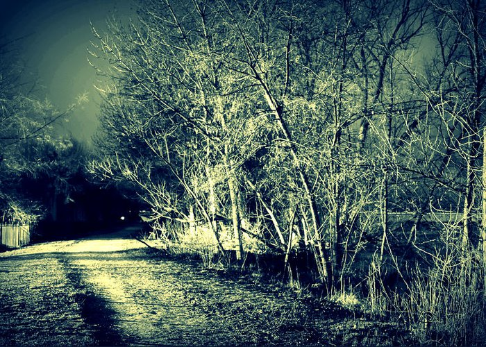 Night Greeting Card featuring the photograph Sleep Walk by Michael Draper