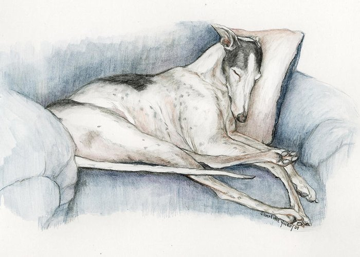 Pet Greeting Card featuring the painting Sleeping Greyhound by Charlotte Yealey