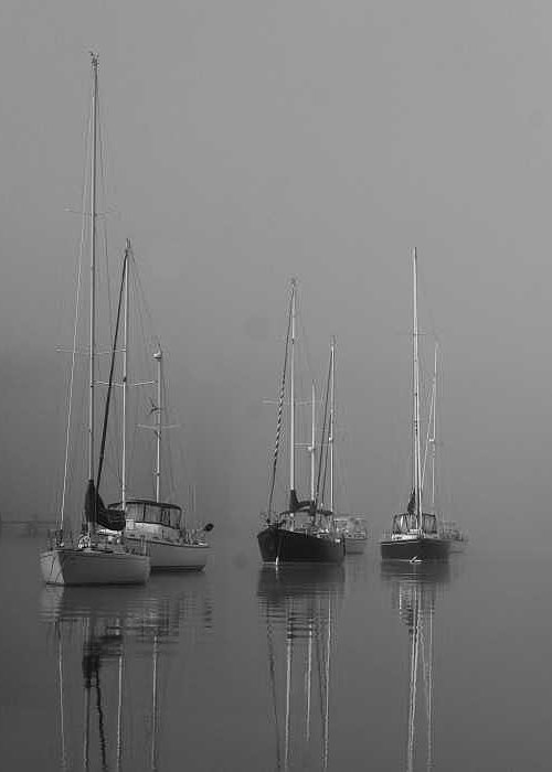 Boat Greeting Card featuring the photograph Sleeping Yachts by Arthur Sa