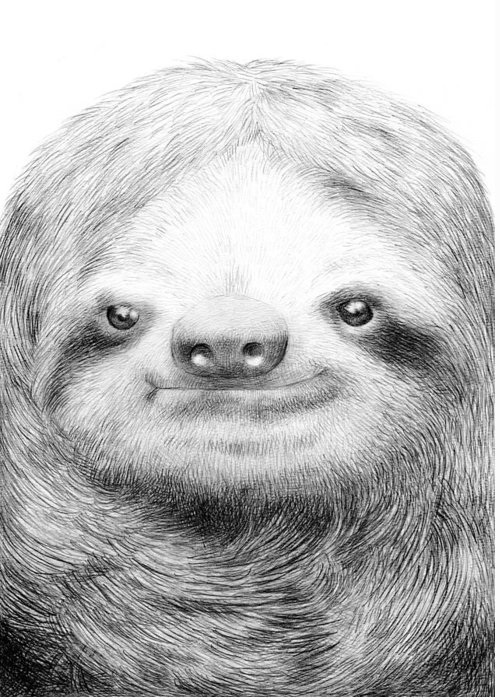 Sloth Greeting Card featuring the drawing Sloth by Eric Fan