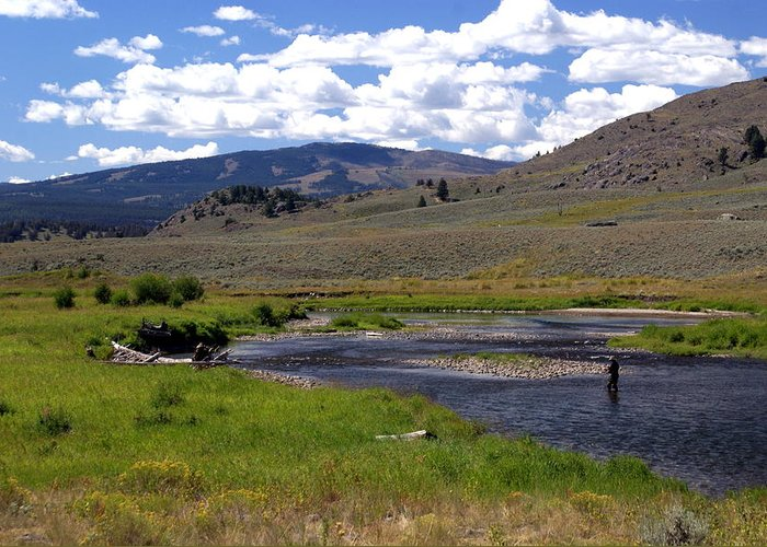 Yellowston National Park Greeting Card featuring the photograph Slough Creek Angler by Marty Koch