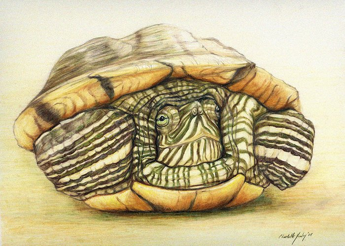 Turtle Greeting Card featuring the painting Slow Retreat by Charlotte Yealey
