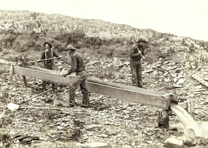 Gold Greeting Card featuring the photograph Sluice Box Placer Gold Mining C. 1889 by Daniel Hagerman