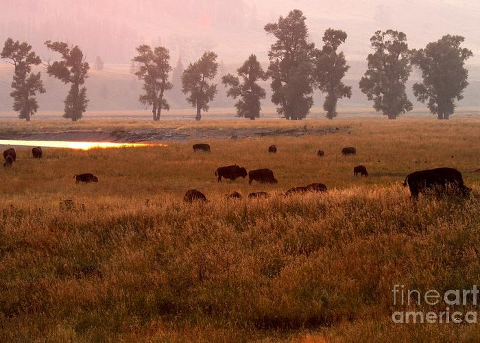 Lamar Valley Sunset Greeting Card featuring the photograph Smoke Over Lamar Valley by Adam Jewell