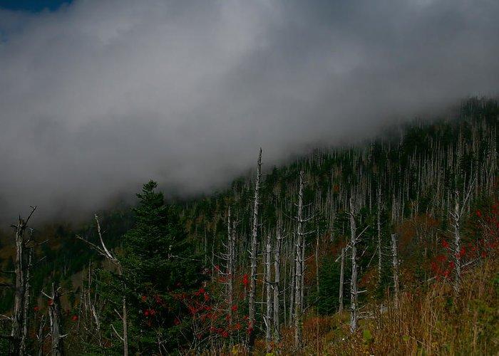 Smokey Mountains Greeting Card featuring the photograph Smokey Mountains by James Jones