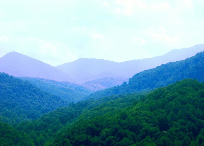 Mountains Greeting Card featuring the photograph Smokies In Spring by Cat Rondeau
