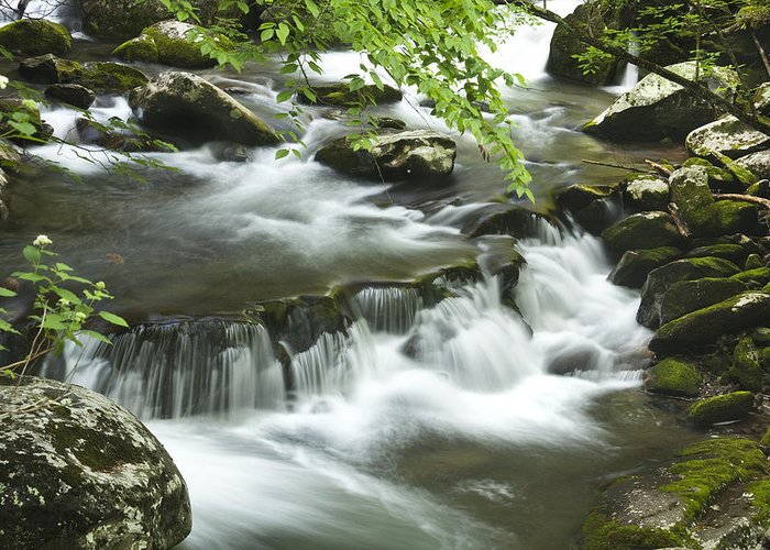 Tremont Greeting Card featuring the photograph Smoky Mountain Rapids by Andrew Soundarajan