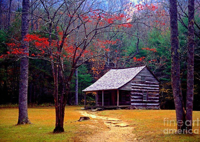 Log Cabin Greeting Card featuring the photograph Smoky Mtn. Cabin by Paul W Faust - Impressions of Light