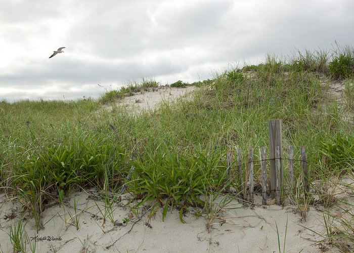 Dune Greeting Card featuring the photograph Smugglers Beach Dune South Yarmouth Cape Cod Massachusetts by Michelle Wiarda