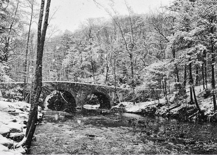 Snow Greeting Card featuring the photograph Snow Along The Wissahickon Creek by Bill Cannon