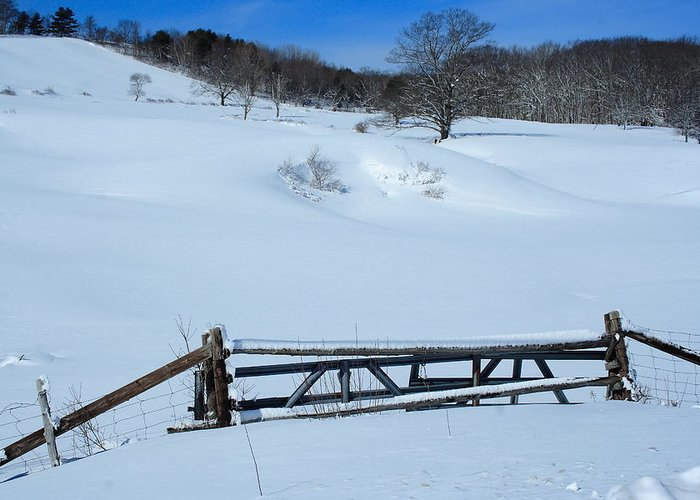 Seascape Greeting Card featuring the photograph Snow Fence by Doug Mills
