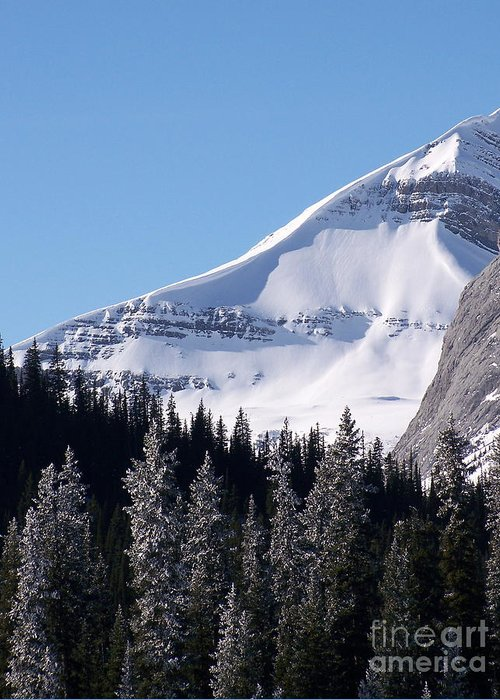 Scenic Greeting Card featuring the photograph Snow Ledge by Greg Hammond
