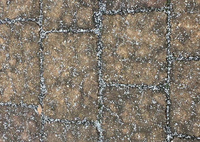 Paving Stones White Snow Pattern Greeting Card featuring the photograph Snow Pellets by Scott Burd