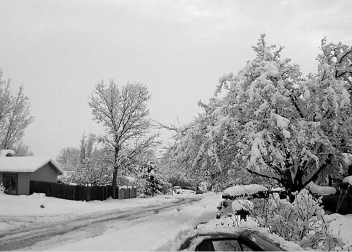Snow Greeting Card featuring the photograph Snowed In by Jera Sky