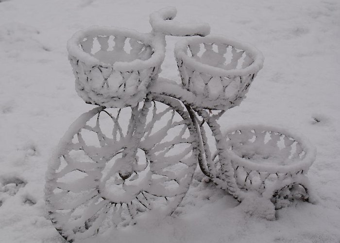 Snow Greeting Card featuring the photograph Snowy Cycle Wheel by Douglas Barnett