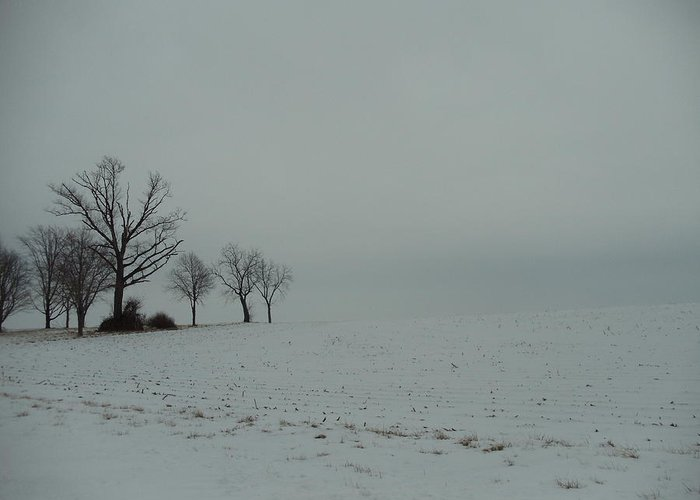 Landscape Greeting Card featuring the photograph Snowy Illinois Field by David Junod