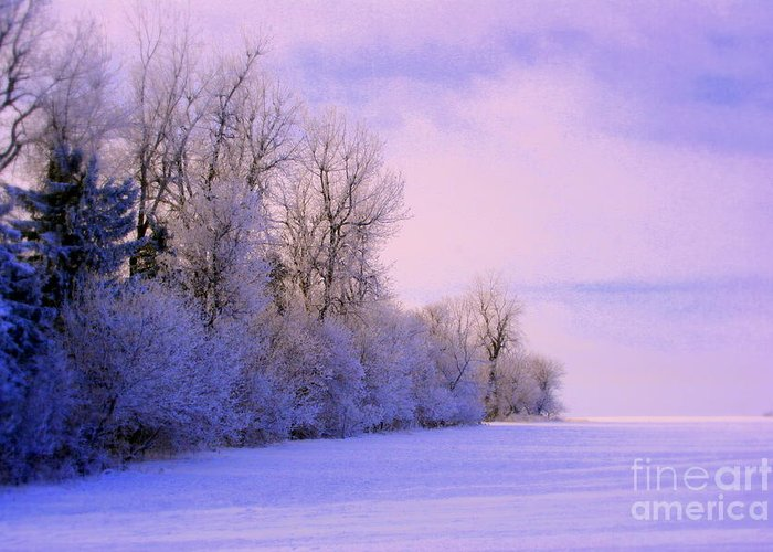Snowy Day Greeting Card featuring the photograph Snowy Sunday by Julie Lueders