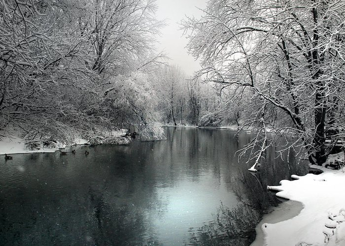 Snow Greeting Card featuring the photograph Soft Blanket by Rob Blair