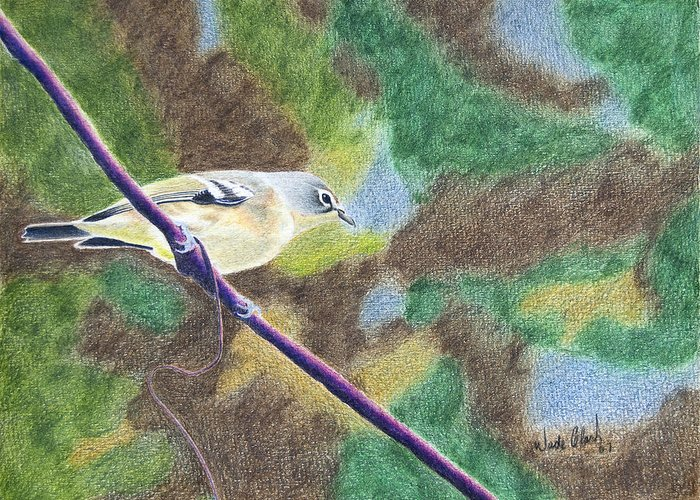 Birds Greeting Card featuring the painting Solitary Vireo by Wade Clark