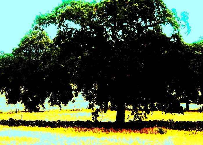 Trees Greeting Card featuring the painting Solitude by Tim Tanis