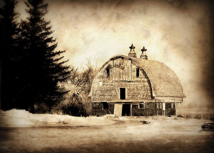 Barn Greeting Card featuring the photograph Somethings Missing by Julie Hamilton