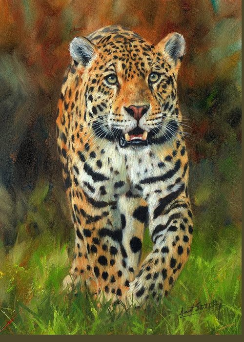 Jaguar Greeting Card featuring the painting South American Jaguar by David Stribbling