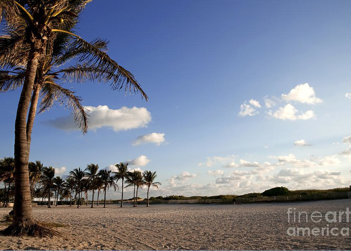 Landscape Greeting Card featuring the photograph South Beach Miami by DeeDee Yelverton